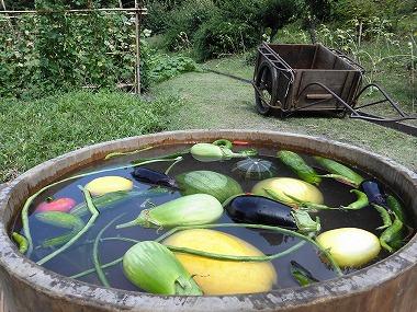 農業の芸術